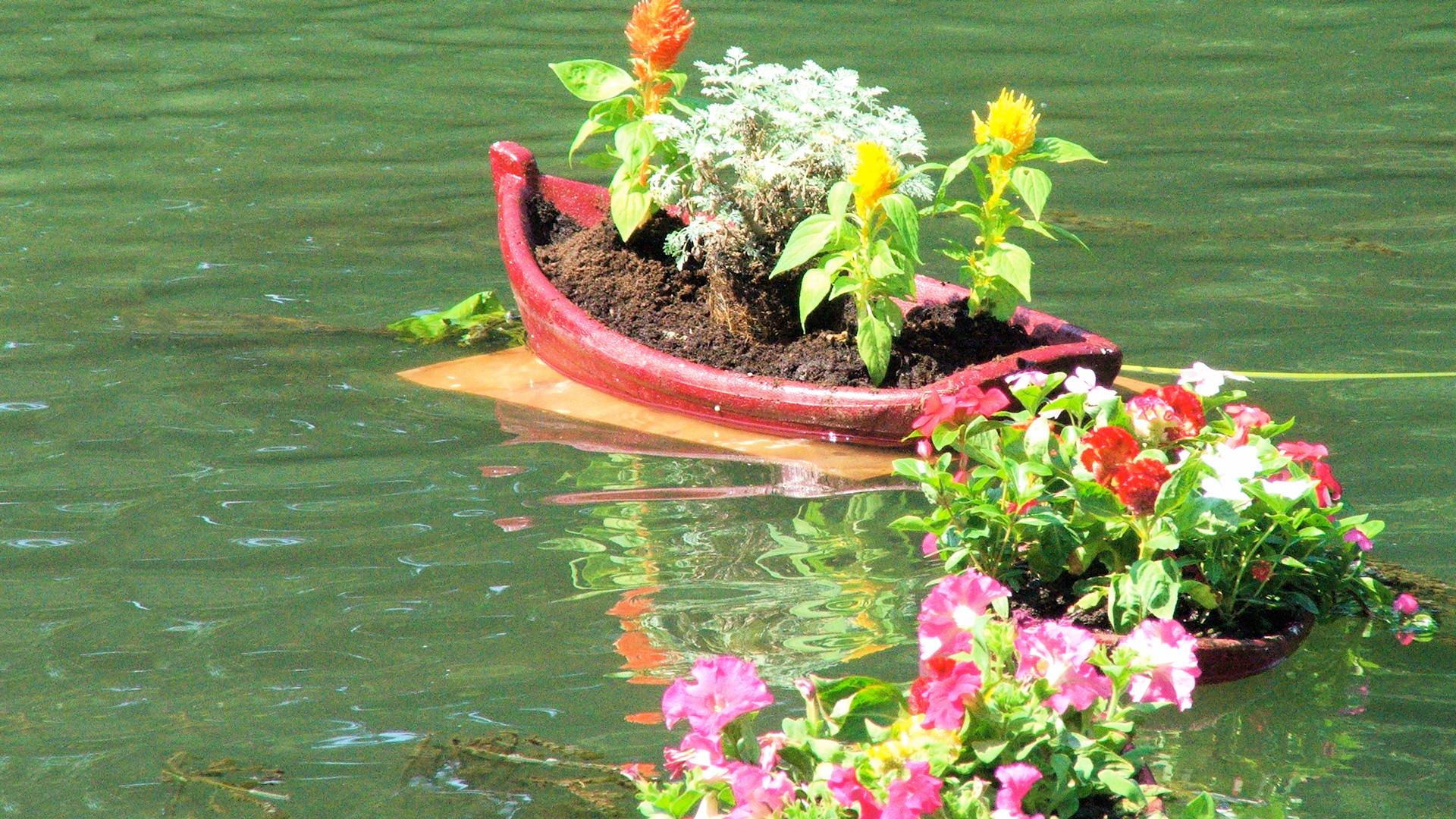 Les Jardins Du Moulin Paysagiste le moulin jaune | le jardin de l'eau